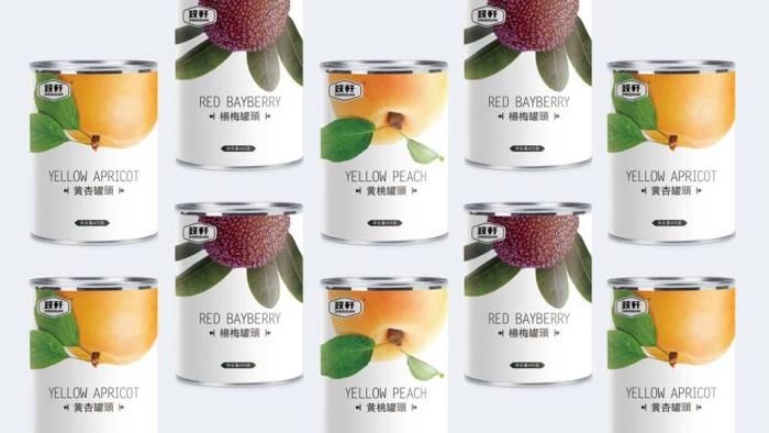 政轩水果罐头