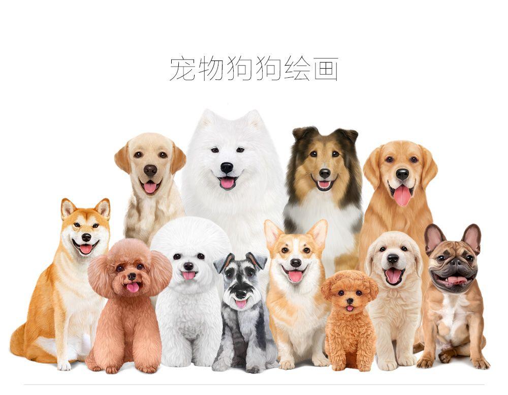手绘狗狗(包装用)